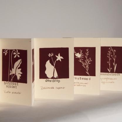 Azure Arnot- The Floral Alphabet